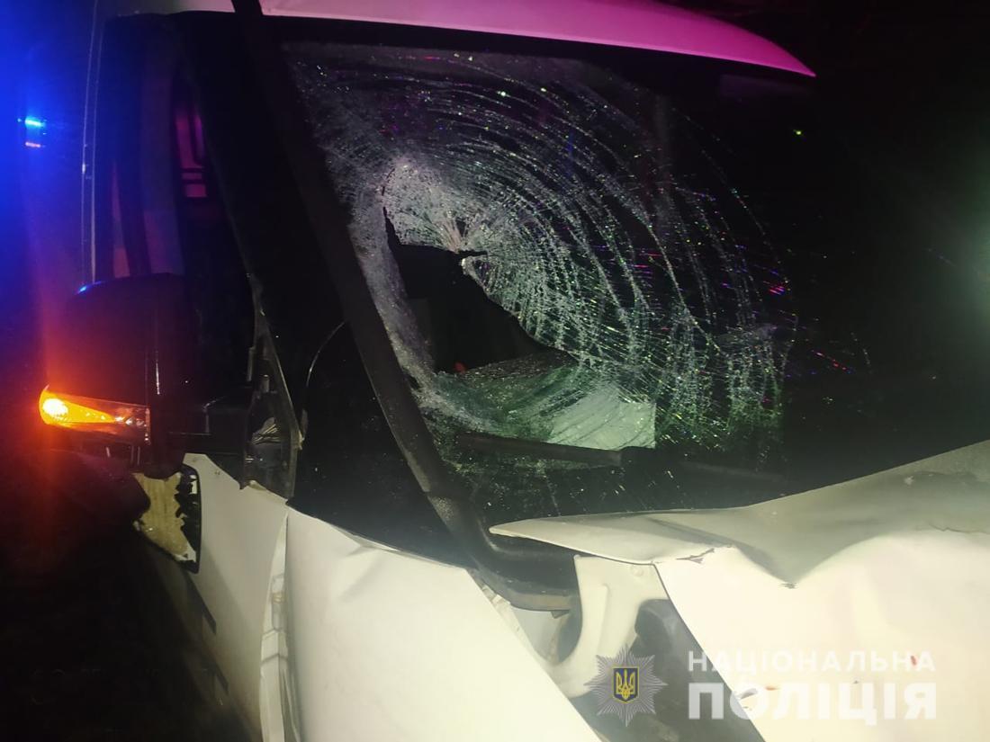 В результате ДТП один мальчик погиб, второй попал в больницу / фото zt.npu.gov.ua1